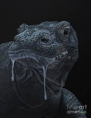 Komodo Dragon Print by Jedidiah Campbell