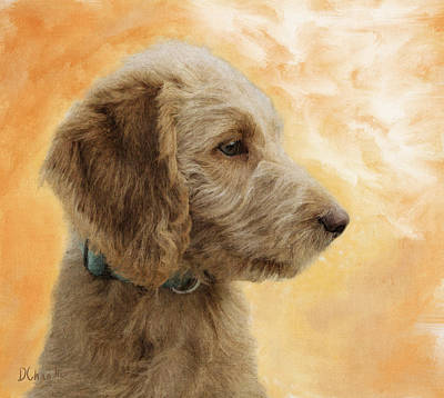 Retriever Digital Art - Labradoodle Puppy by Diane Chandler