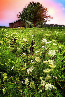 Mennonite Photograph - Lace At Sunset II  by Debra and Dave Vanderlaan
