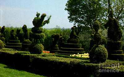 Ladew Topiary Gardens Print by Ruth  Housley