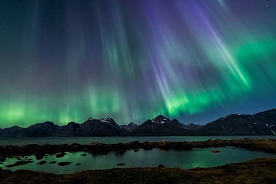 Aurora Photograph - Lady Of The Night by Tor-Ivar Naess