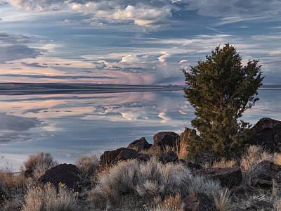 Mystic Lakes Photograph - Lake Abert 8 by Leland D Howard