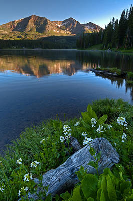 Lake Irwin Wildflowers Print by Mike Berenson