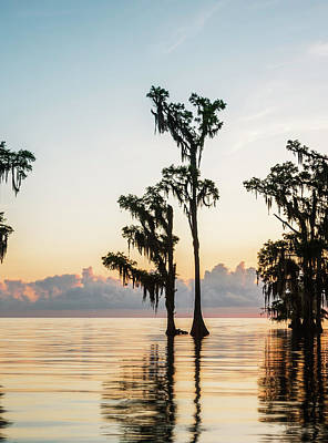 Landscape Photograph - Lake Maurepas Sunrise Triptych No 2 by Andy Crawford