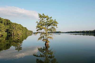 Photograph - Lake Providence Louisiana by Scott Pellegrin