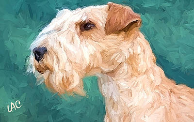 Lakeland Dog Painting - Lakeland Terrier by Laurence Canter