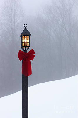Lamppost In Snow Print by Will and Deni McIntyre