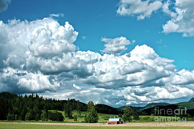 Photograph - Land Meets Sky by Janie Johnson