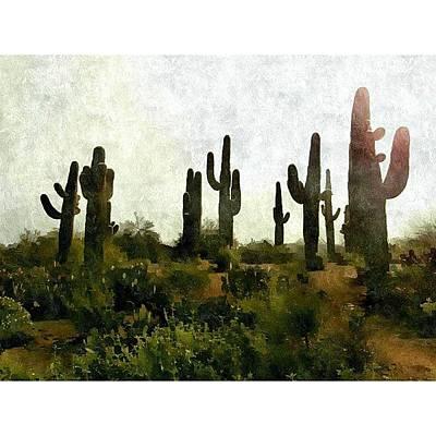 Desert Photograph - Land Of The by Karyn Robinson