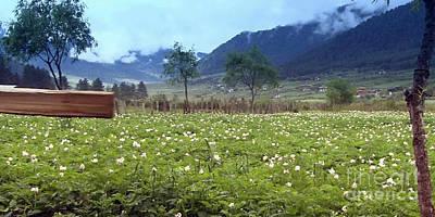 Landscape Horizon Skyviews Flower Valley Of Bhutan Buddhist Monarchy  Mountains Clouds Posters Shirt Original by Navin Joshi