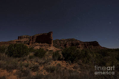 Landscape In The Moonlight Print by Melany Sarafis