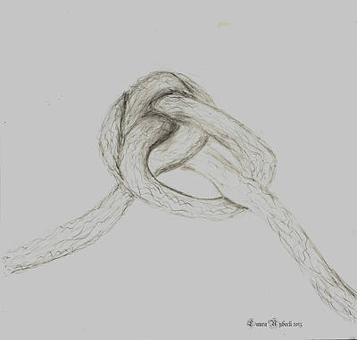 Enclosure Drawing - Large Knot by Laura Nybeck
