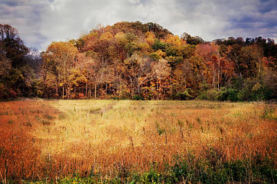Photograph - Larue Pine Hill 2 by Marty Koch