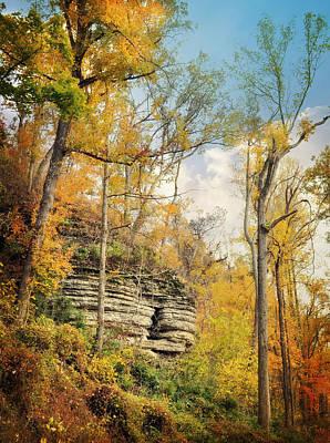 Photograph - Larue Pine Hills 3 by Marty Koch