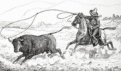 Lassoing A Bull In South America In The 19th Century Print by American School