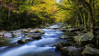 Great Smoky Mountain National Park Photograph - Last Stop by Chad Dutson