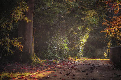 Late Afternoon Autumn Shower Print by Chris Fletcher