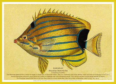 Lauhau - Bluestripe Butterflyfish Print by James Temple