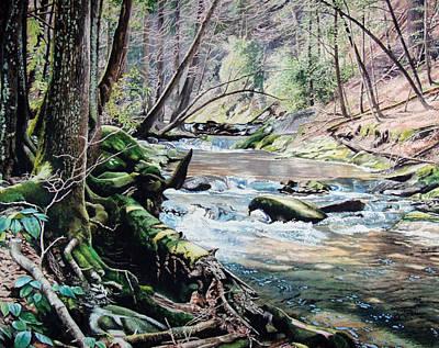 Great Smokey Mountains Painting - Laurel Creek  by Jennifer Oakley-Delaplante