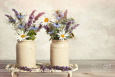 Indoor Photograph - Lavender And Daisies by Amanda Elwell