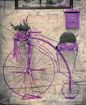 Wheel Drawing - Lavender Bicycle by Svetlana Sewell