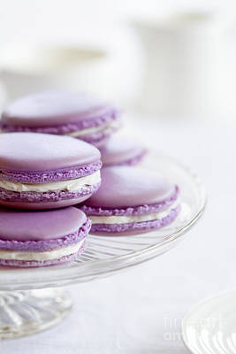 Lavender Macarons Print by Ruth Black