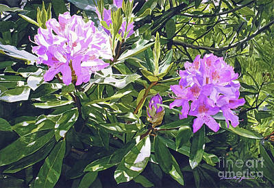 Rhododendron Painting - Lavender Rhododendrons by David Lloyd Glover