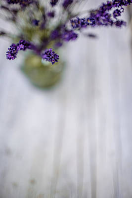 Lilac Photograph - Lavender Still Life by Nailia Schwarz