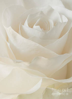 Photograph - Layers In White by Greg Summers