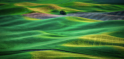 Layers Of Light Print by Don Schwartz