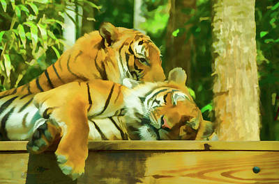 Tiger Photograph - Lazy Afternoon by Artful Imagery