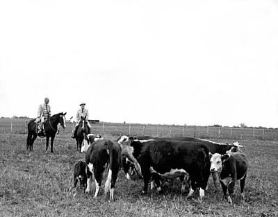 Lbj & Humphrey On Horseback Print by Underwood Archives