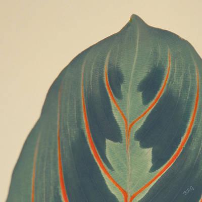 Leaf Print by Ben and Raisa Gertsberg