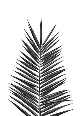 Leaf Print by Nika Art