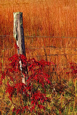 Fences Photograph - Lean On Me by HH Photography of Florida