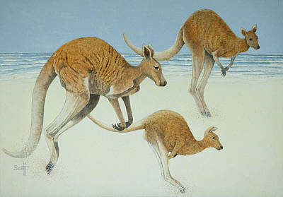 Kangaroo Painting - Leaping Ahead by Pat Scott