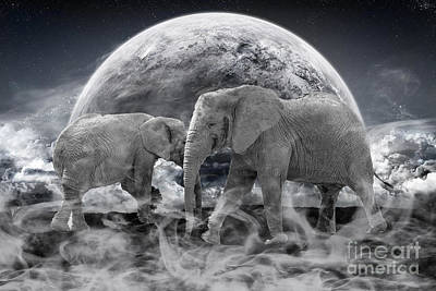 Elephant Photograph - Legends Live On by Stephen Smith