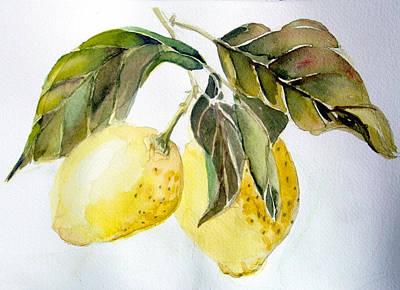 Lemon Drawing - Lemons by Mindy Newman
