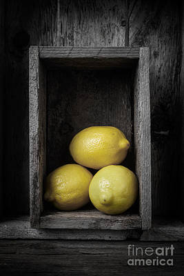 Lemons Still Life Print by Edward Fielding