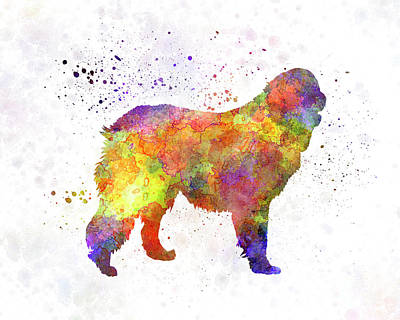 Leonberger In Watercolor Print by Pablo Romero