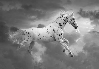 Black And White Horses Digital Art - Leopard Appaloosa Cloud Runner by Renee Forth-Fukumoto