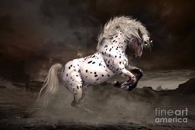 Leopard Appaloosa Shiloh Print by Shanina Conway