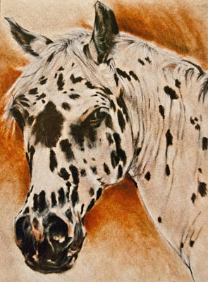 Leopard Appy Print by Jani Freimann