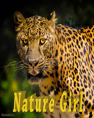Girl Photograph - Leopard Nature Girl by LeeAnn McLaneGoetz McLaneGoetzStudioLLCcom
