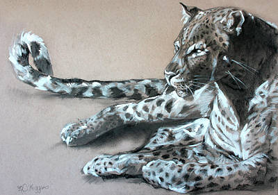 Panther Drawing - Leopard Sketch by Derrick Higgins