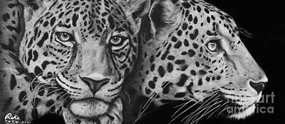 Cheetah Drawing - Leopards by Reks Kadinger