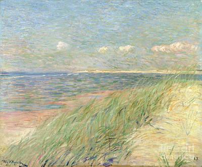 Belgian Painting - Les Dunes Du Zwin Knokke by Theo van Rysselberghe