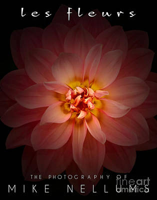 Book Jacket Design Photograph - Les Fleurs Coffee Table Book Cover by Mike Nellums