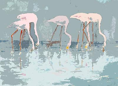 Flamingo Mixed Media - Lesser Flamingos Feeding by Arline Wagner