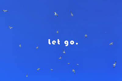 Flying Seagull Photograph - Let Go by Joana Kruse